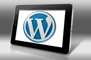 Wordpress Our CEO Recommends
