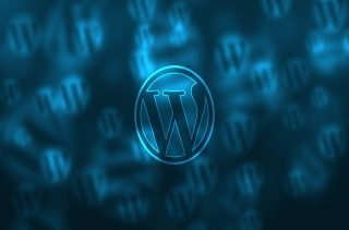 wordpress weekly Our CEO Recommends